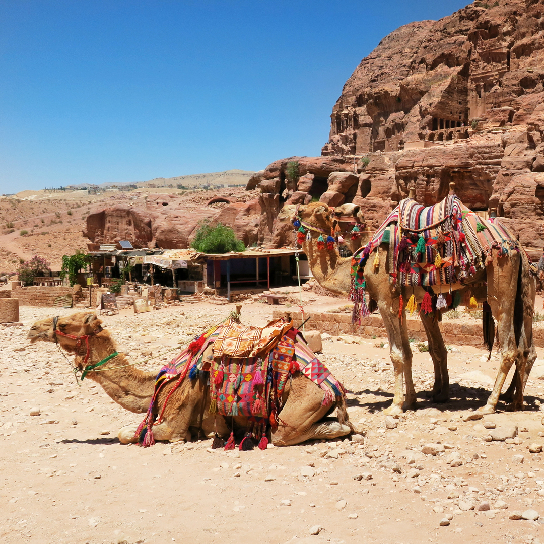 Reisverslag: Gelezen in Israël (Hotspots in Petra, Jordanië)