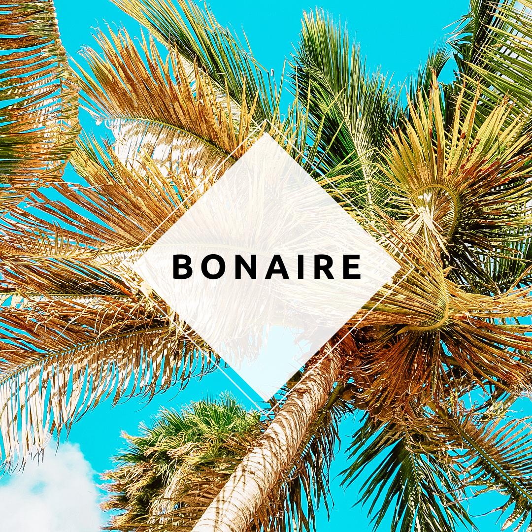 Gelezen op Bonaire
