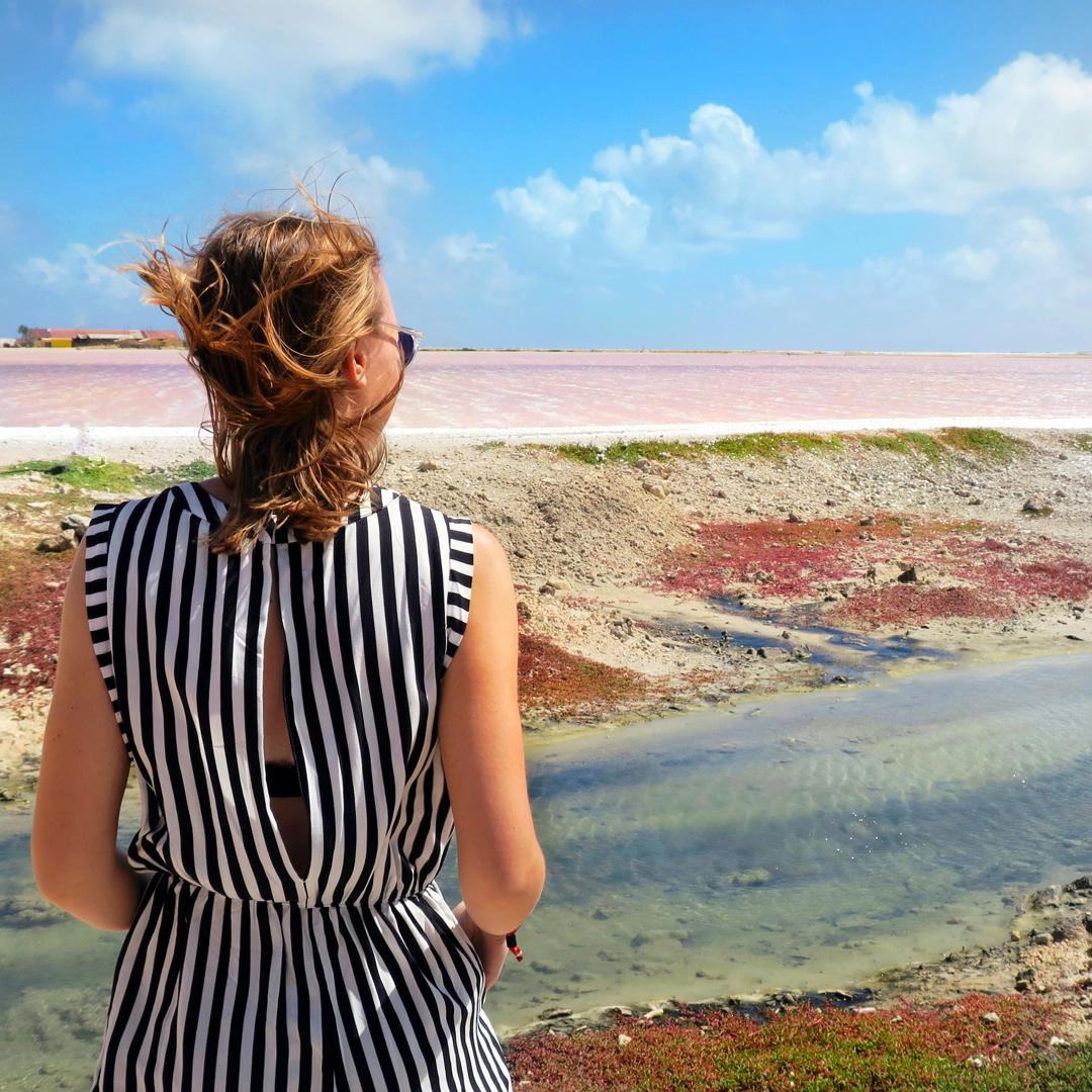 Gelezen en gezien op Bonaire: zoutpannen, roze strand (hotspot)