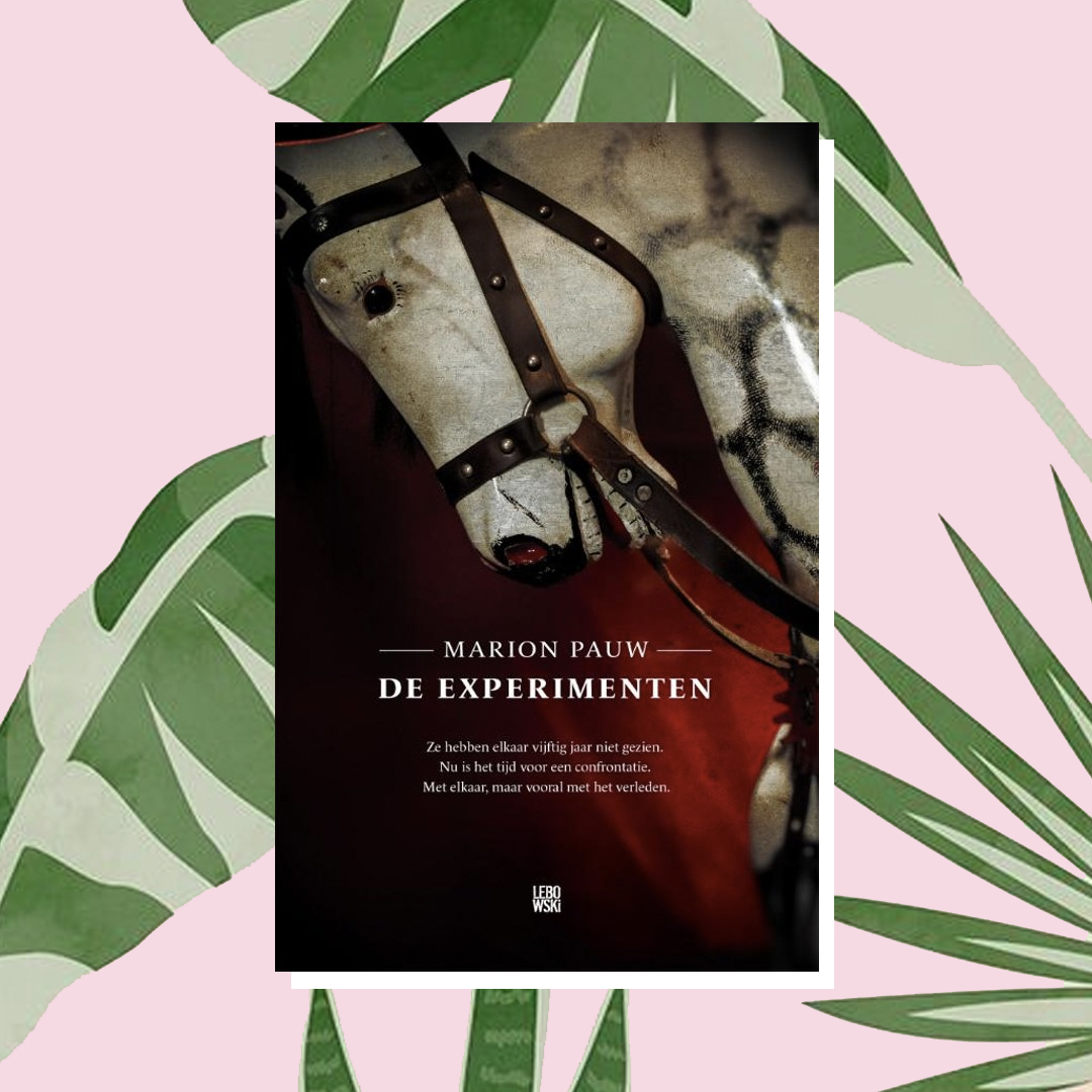 Vakantieboek: Marion Pauw - De experimenten