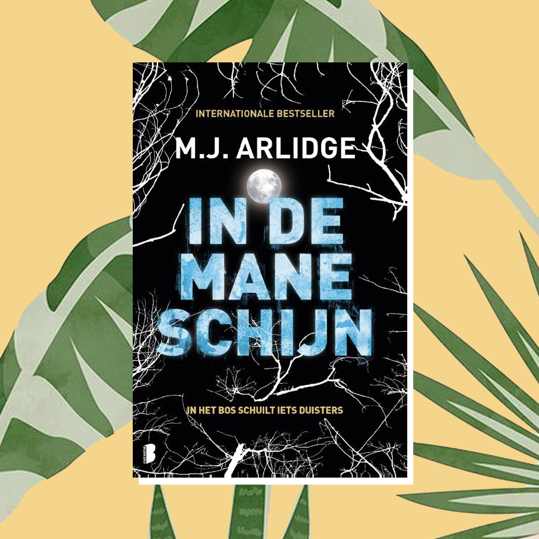 Vakantieboek: M.J. Arlidge – In de maneschijn