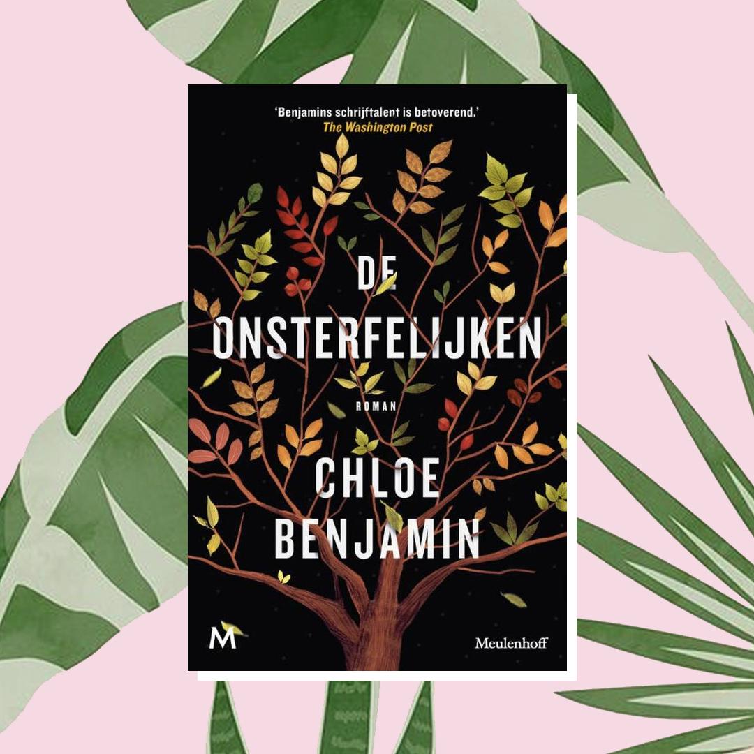 Vakantieboek: Chloe Benjamin - De onsterfelijken