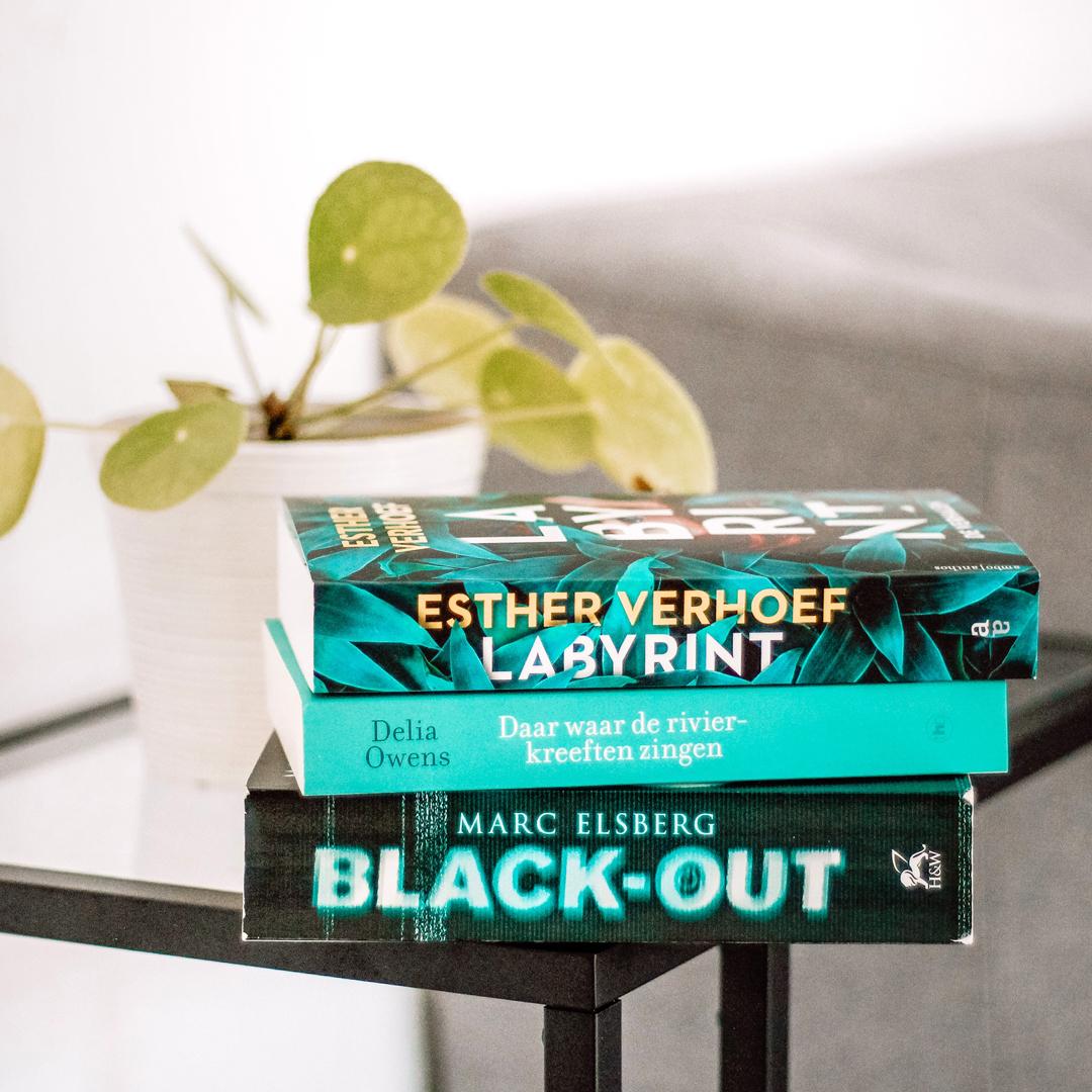 Boekrecensie: Boekrecensie: Marc Elsberg - Black-out