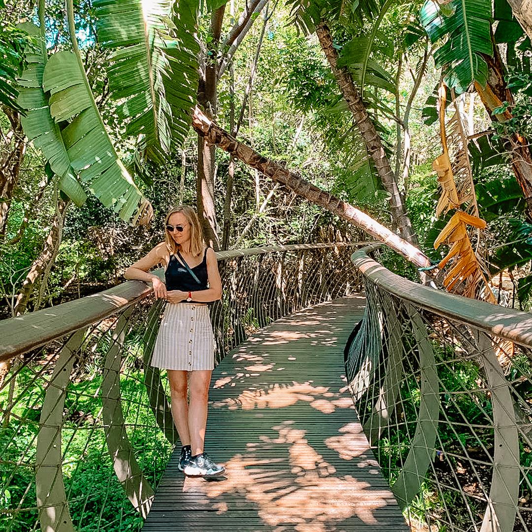 Bezienswaardigheden: Kaapstad, Kirstenbosch National Botanical Garden