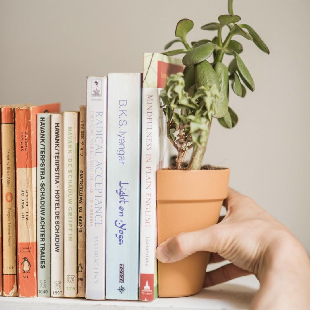 Een plant als boekensteun (Suck UK bloempot)